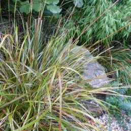 jaren dertig tuin oosterbeek stip gras en kei
