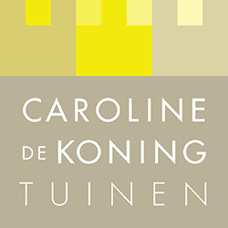 logo caroline de koning